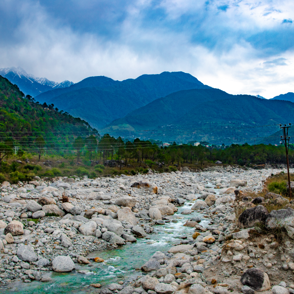 10 Places to Visit in Palampur