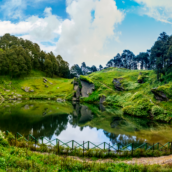Top 10 Forests to Explore for Nature Lovers in India