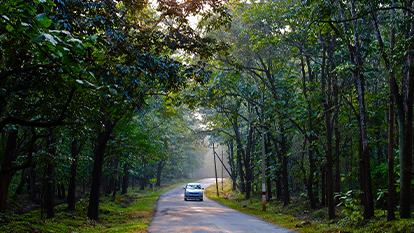 15 Best Places to Explore in Dandeli