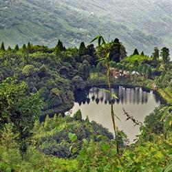 Senchal Wildlife Sanctuary, West Bengal